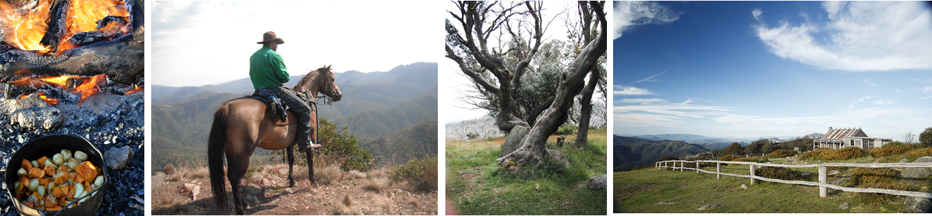 high country and king billy.png