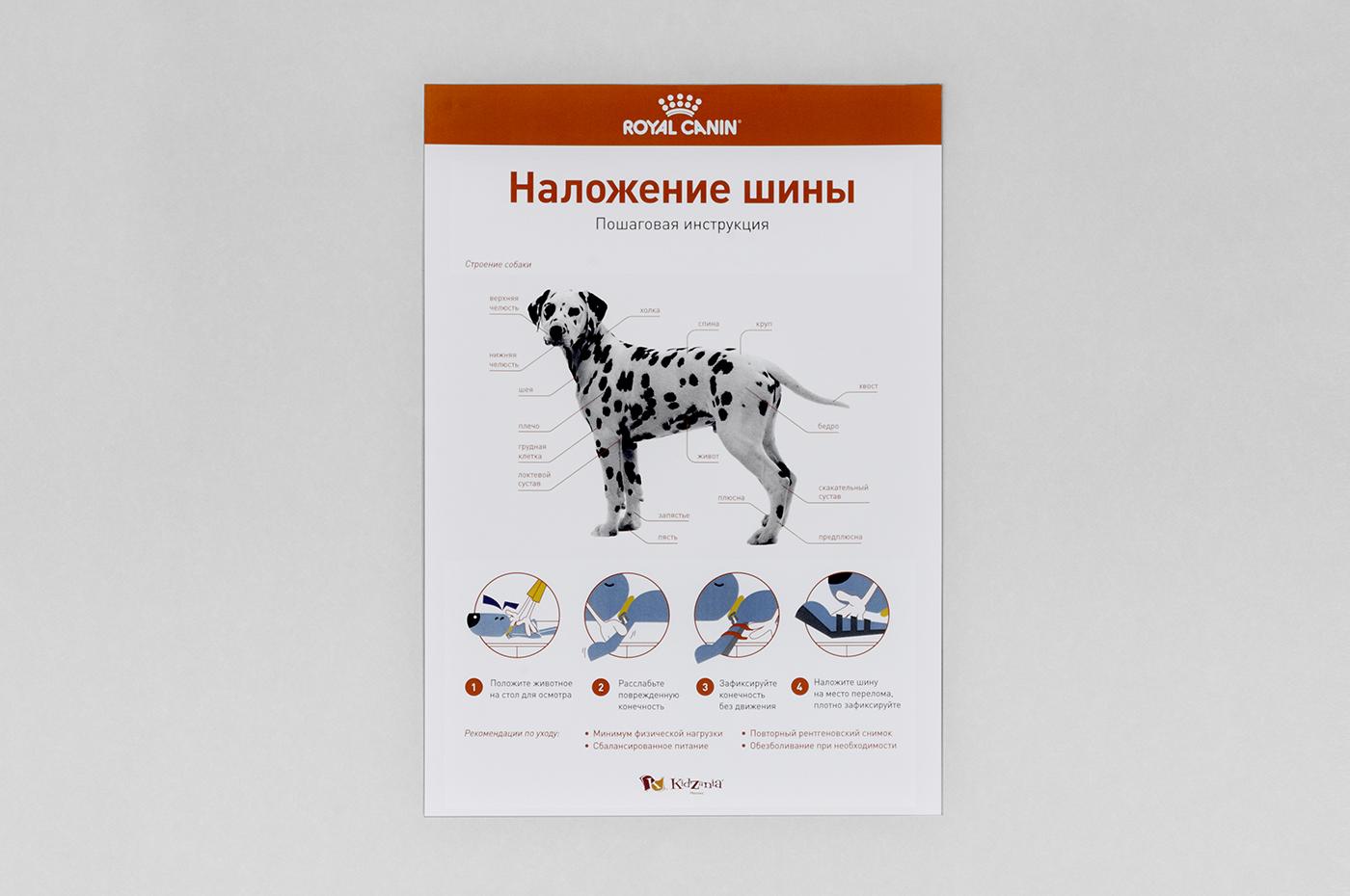 jbn_canin_poster-1.jpg