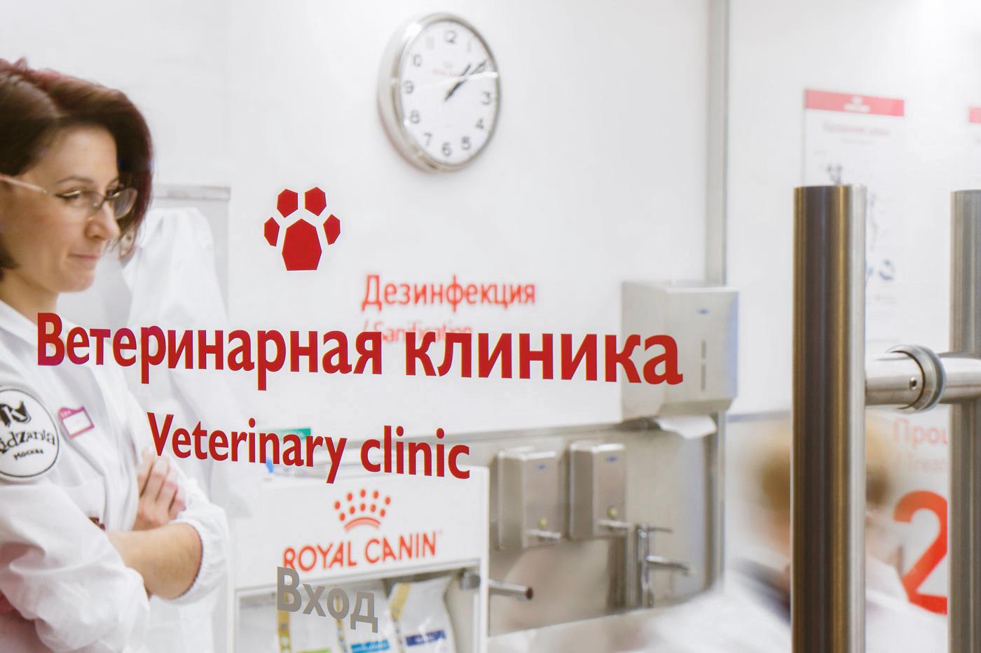 justbenice-kidzania-veterinaryclinic-3-6.jpg