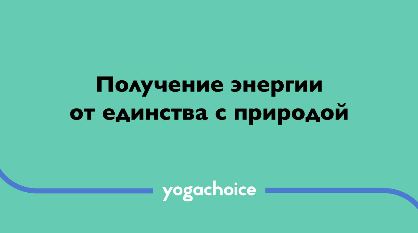 justbenice-yogachoice_slogan2.png