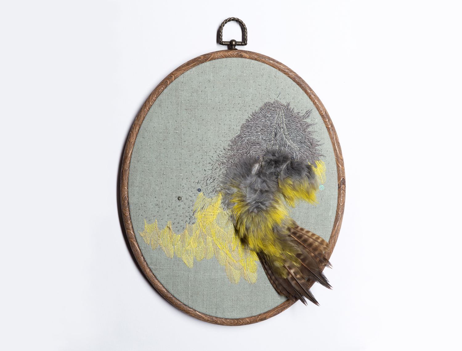 'Plumose' (2013) Hand embroidery and vintage taxidermy on linen, readymade embroidery hoop, 27cm x 22cm.