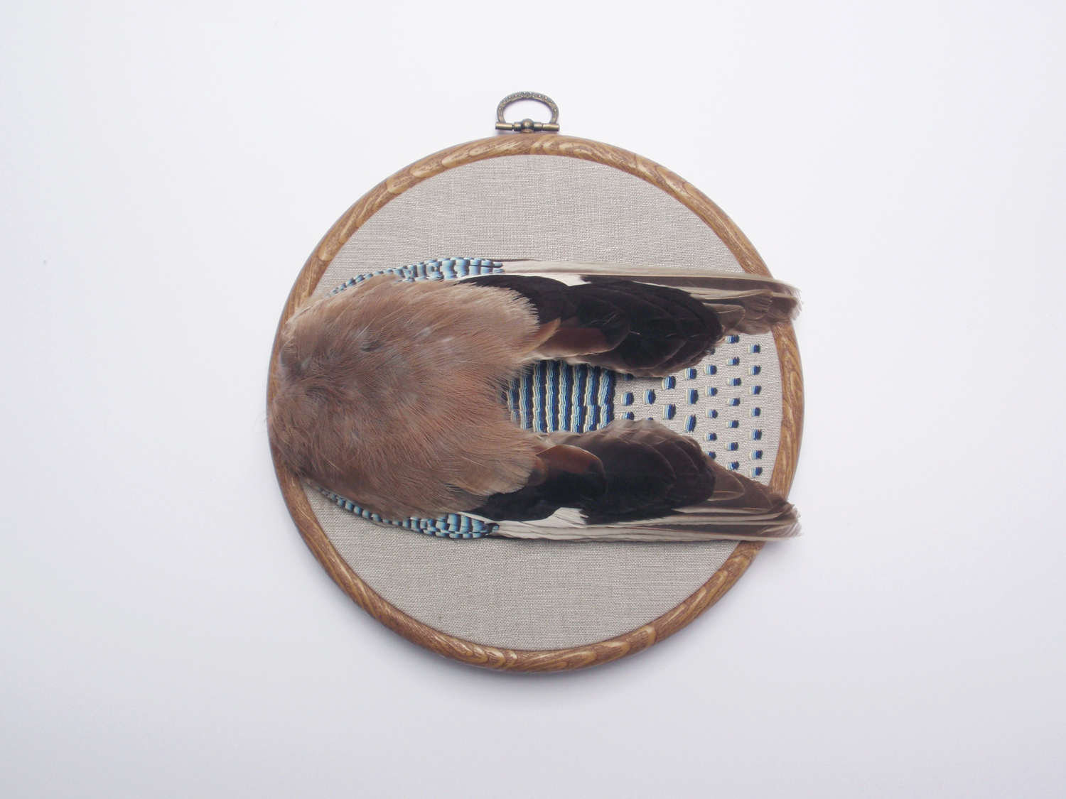 'Iridescent' (2014) Hand embroidery and vintage taxidermy on linen, readymade embroidery hoop, 19cm diameter.