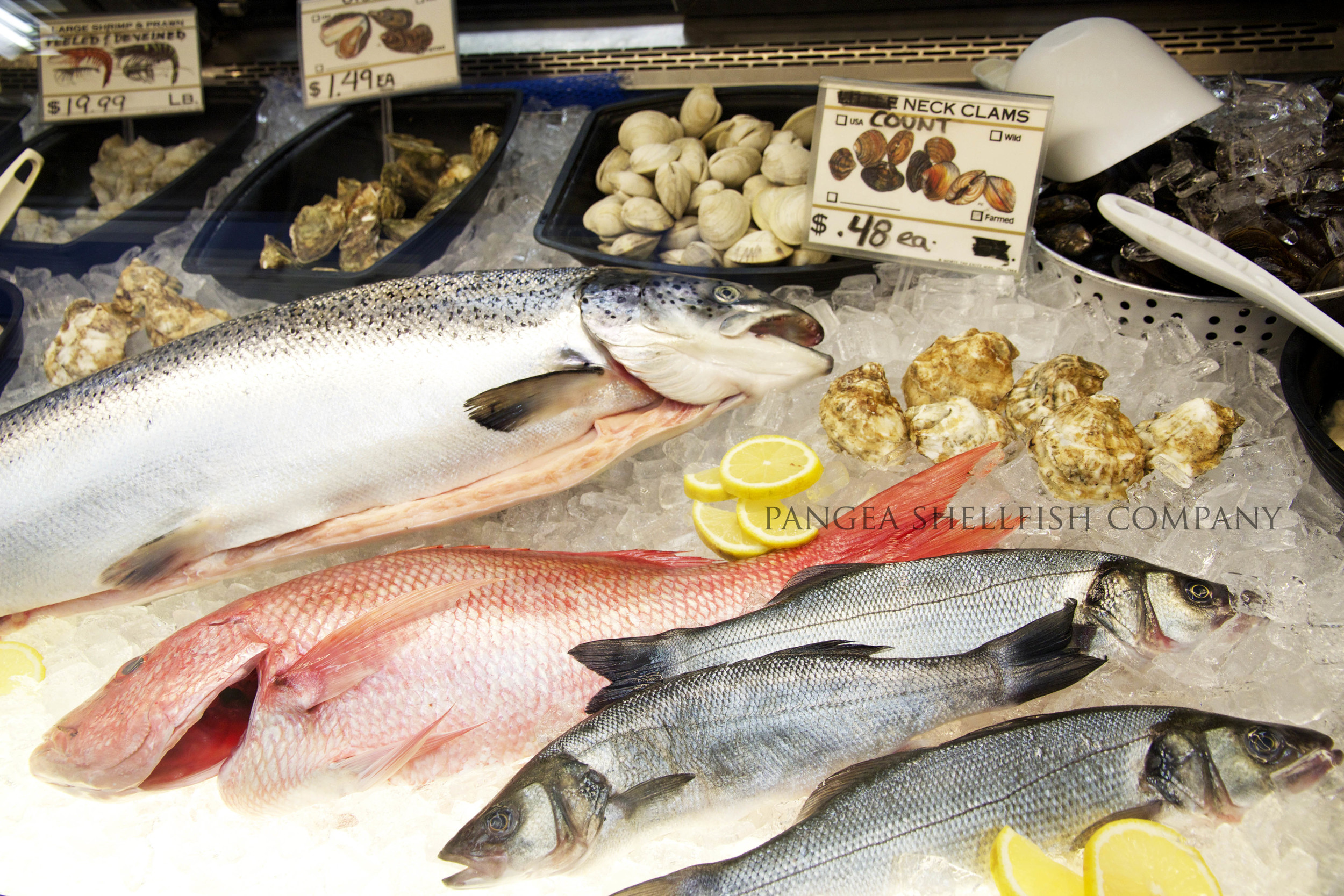 Fresh fish and an assortment of seafood on display in the Earth & Sea shop.