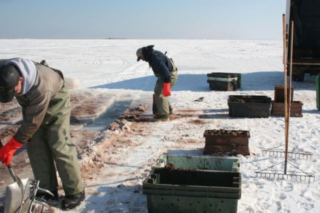 Ice_Fishing_036.jpg