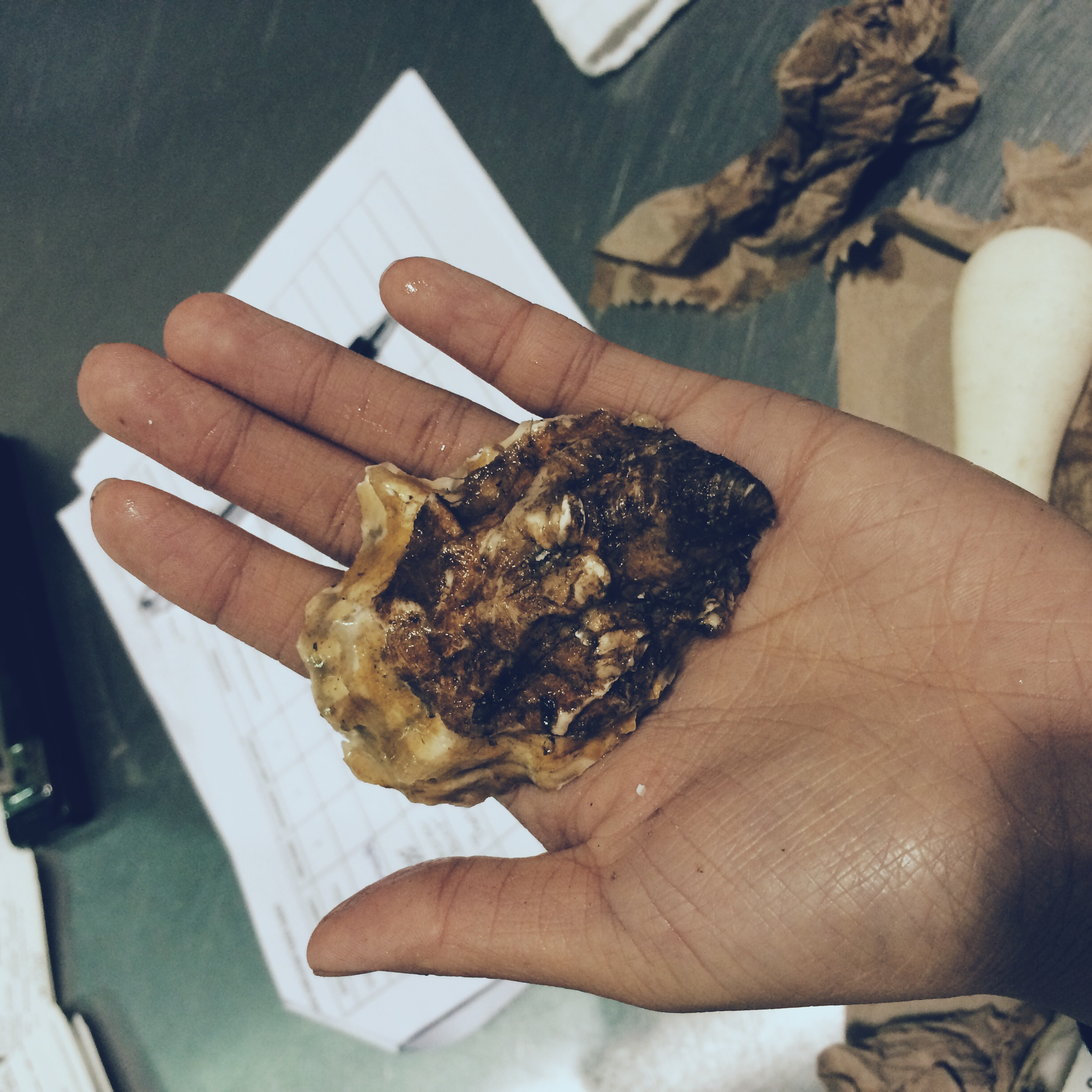 Glacier Point Oyster shucked on Oct. 2, 2014