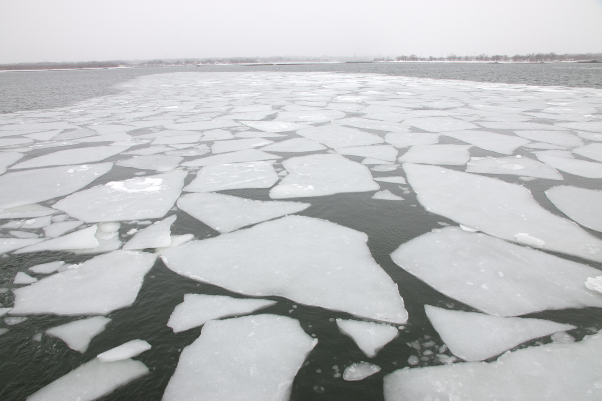 Floating ice in the Norwalk Islands