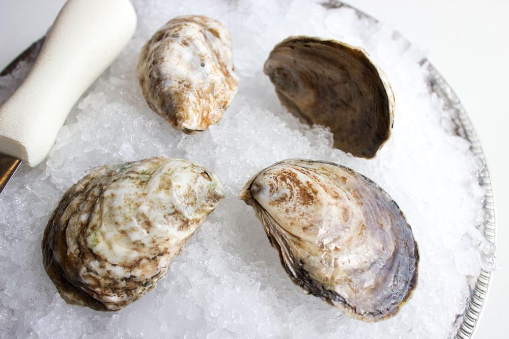 WR-Little-Island-Oyster-3.jpg