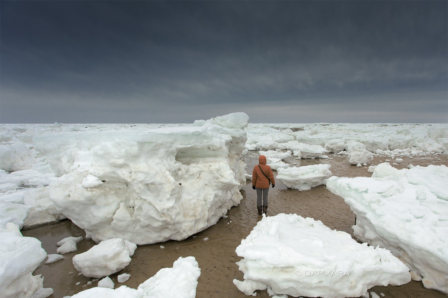 icebergs on the beaches of cape cod. Photo by Dapixara via the washington post