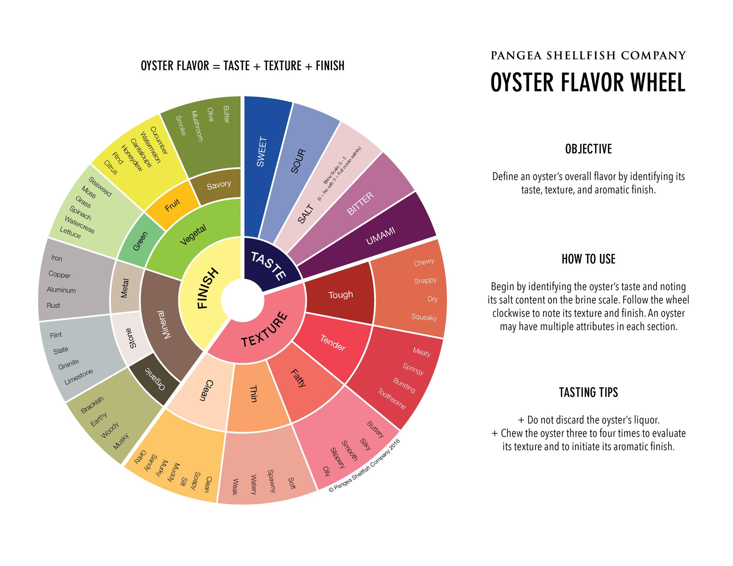 pangea oyster flavor wheel