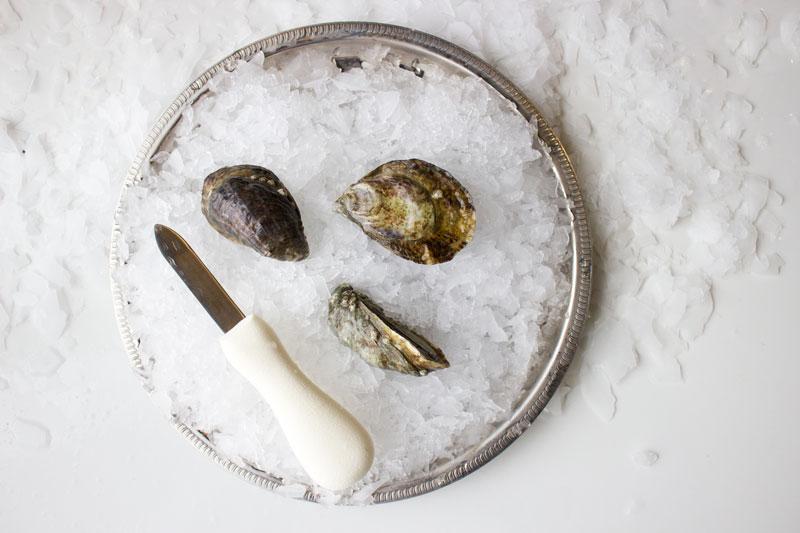 pangea-shigoku-oyster-2.jpg