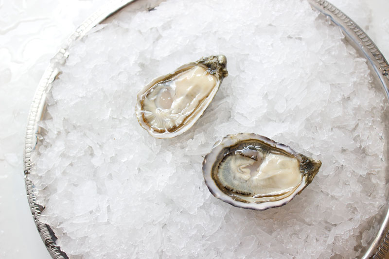 pangea-shigoku-oyster.jpg