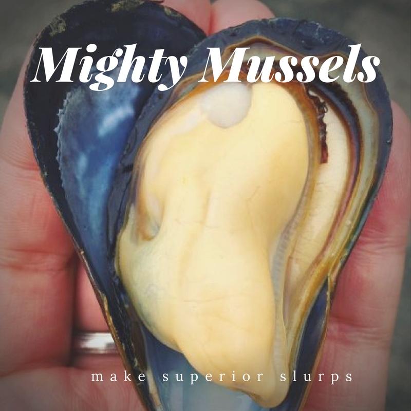 Mighty Mussel (1).jpg