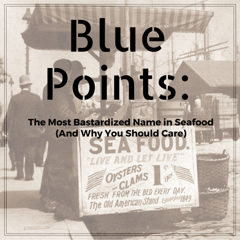 True Blue Points.png