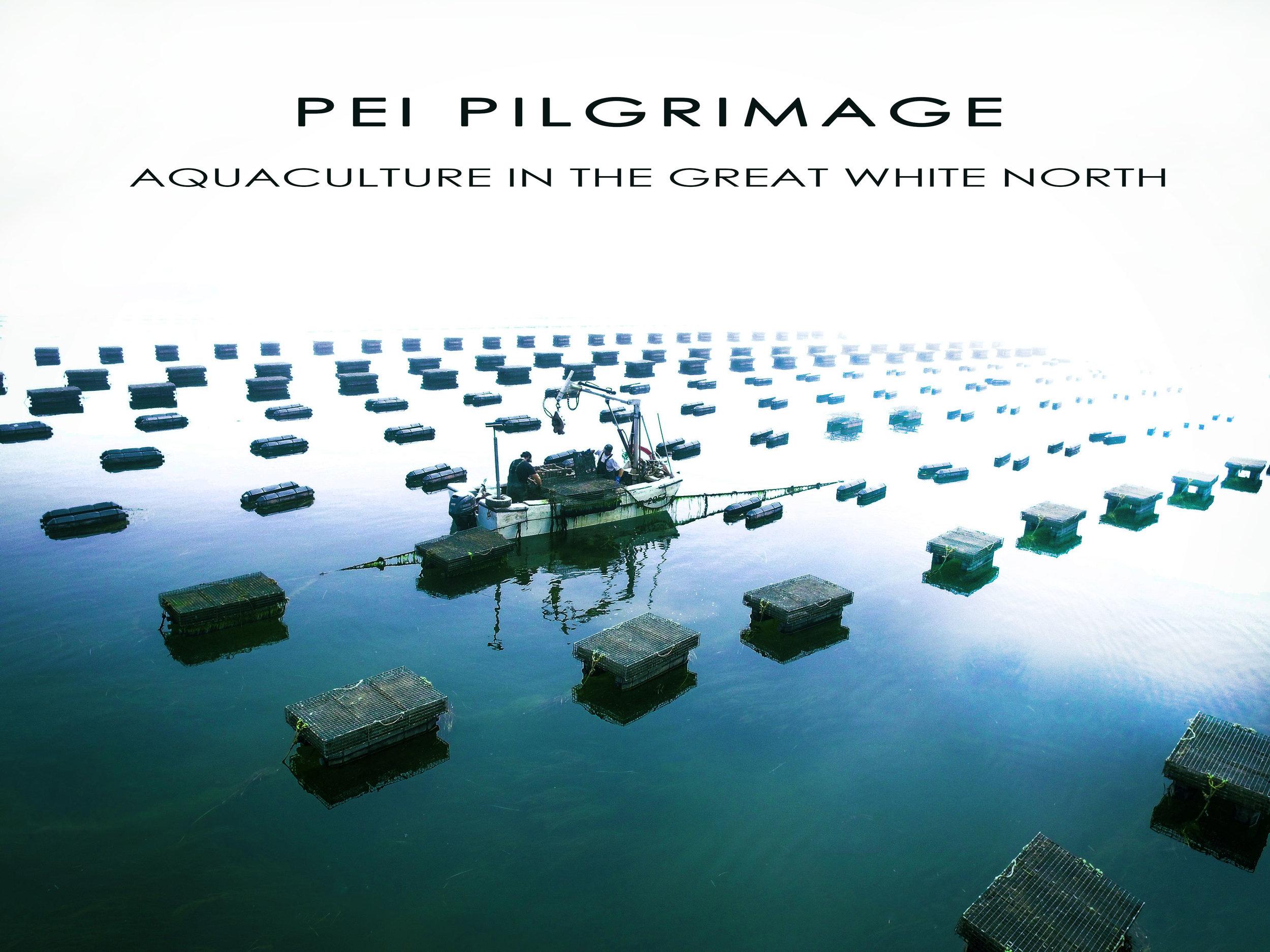 PEI Pilgrimage.jpg