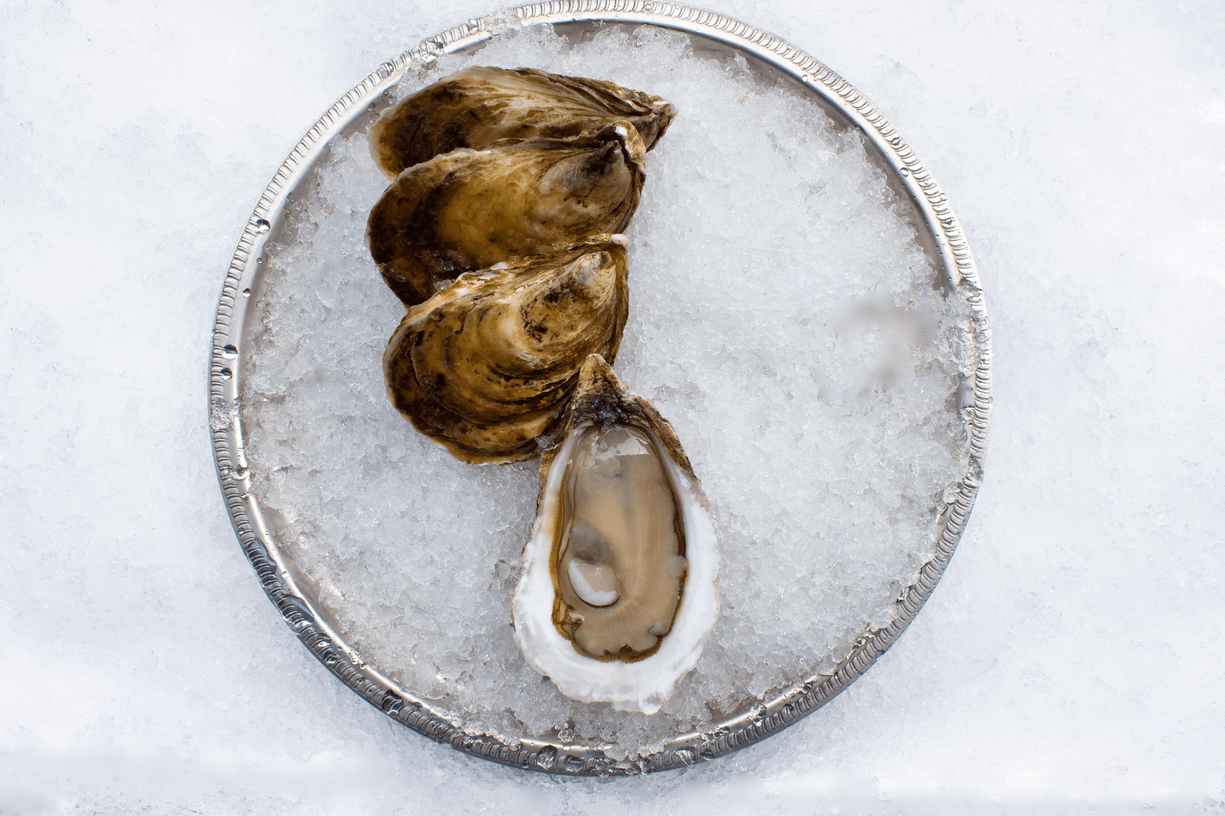 Acadian Pearl 2.png