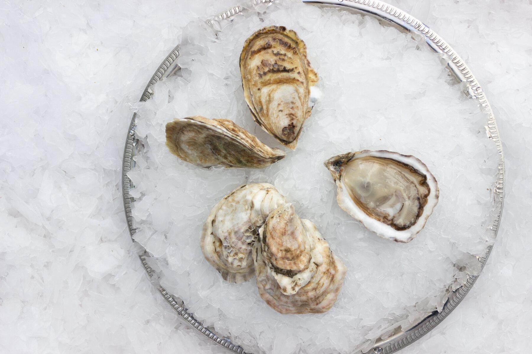 cadillac oyster-1.jpg