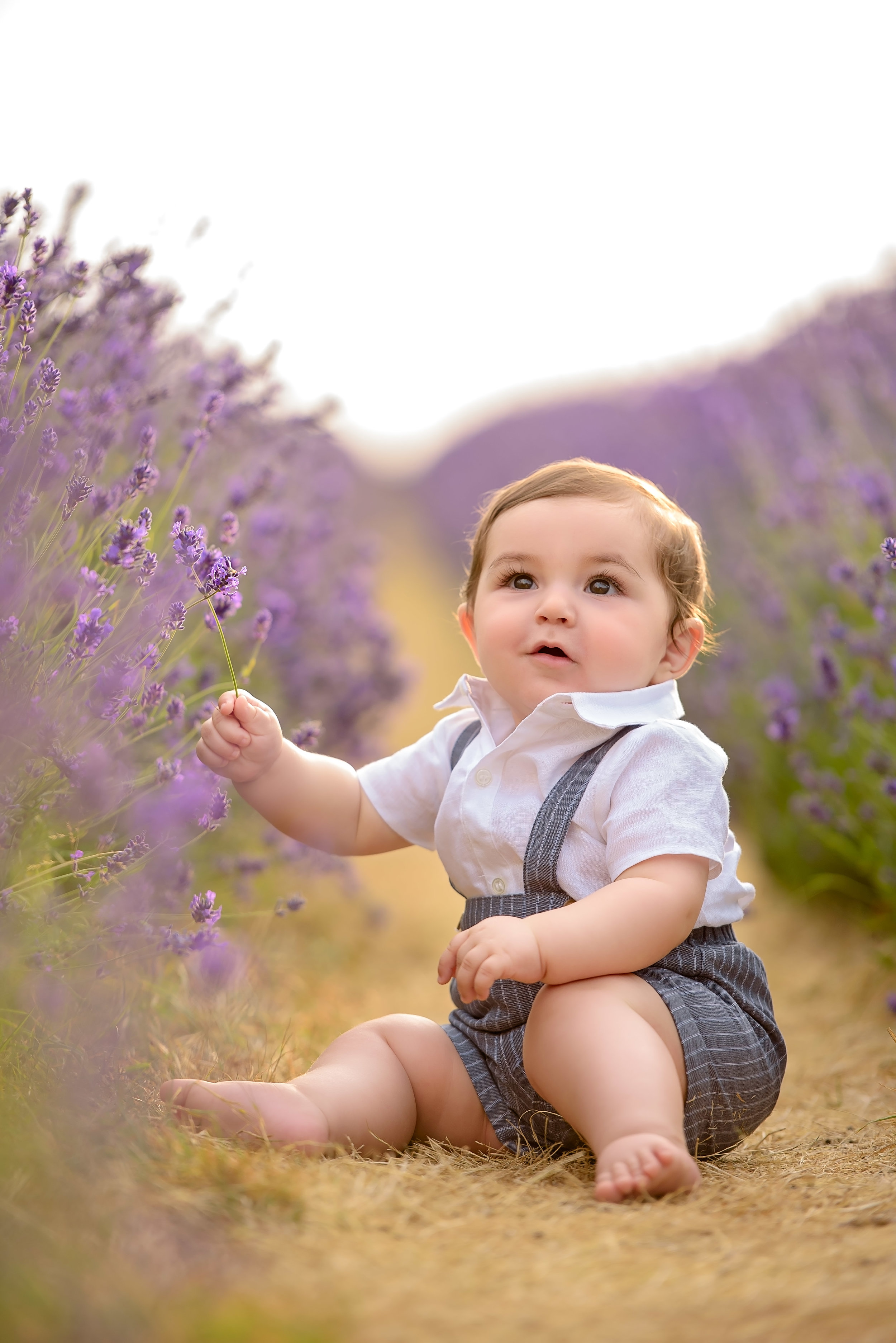 Child photography at Mayfield lavender farm
