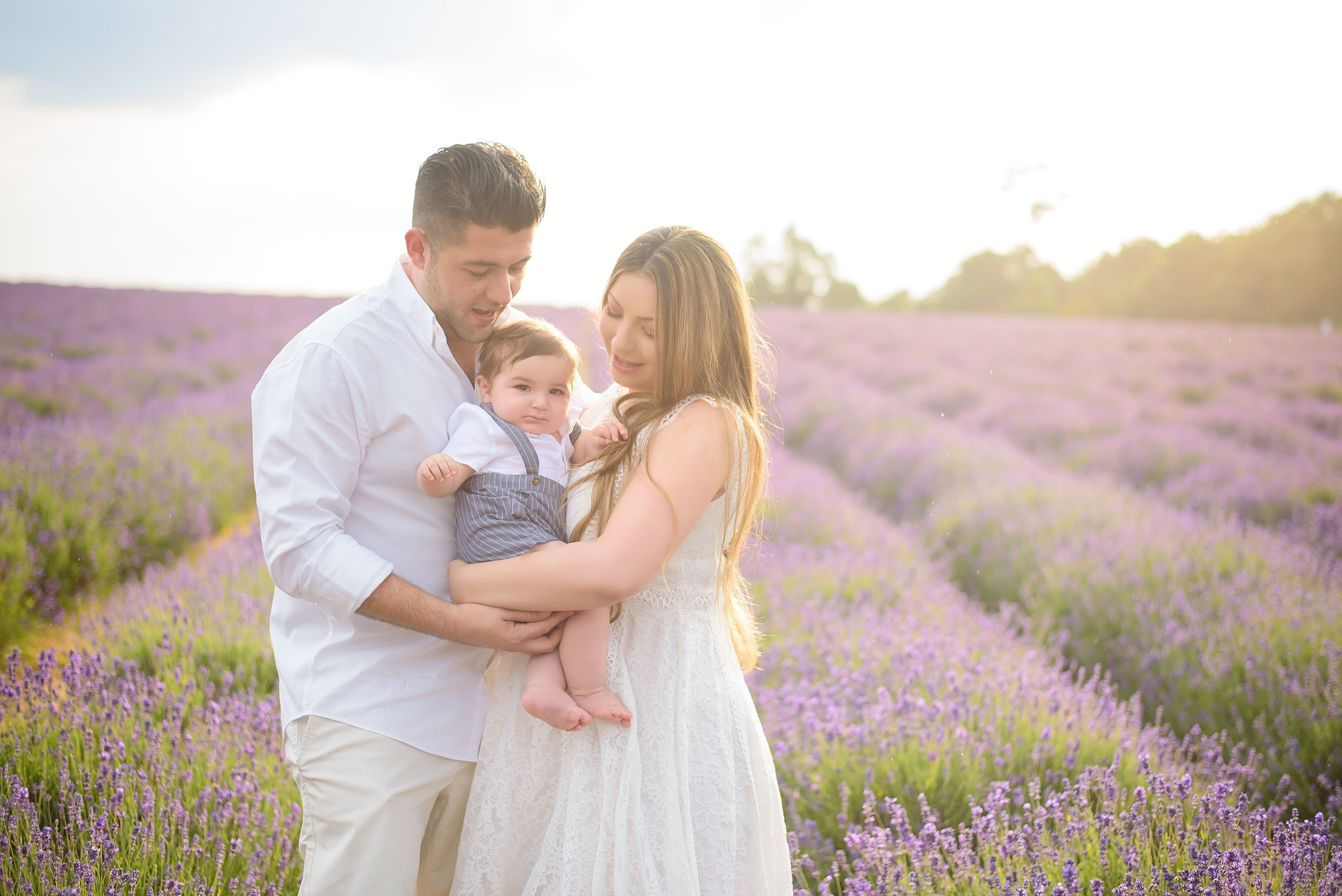 Lavender field family photo shoot London