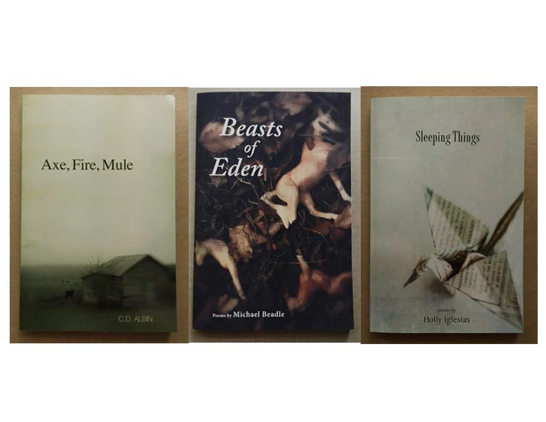 Congratulations to Craig, Michael and Holly for your newly published books of poetry and prose. It's been a real pleasure to work with you and many thanks for allowing my art to grace the covers of your wonderful work.