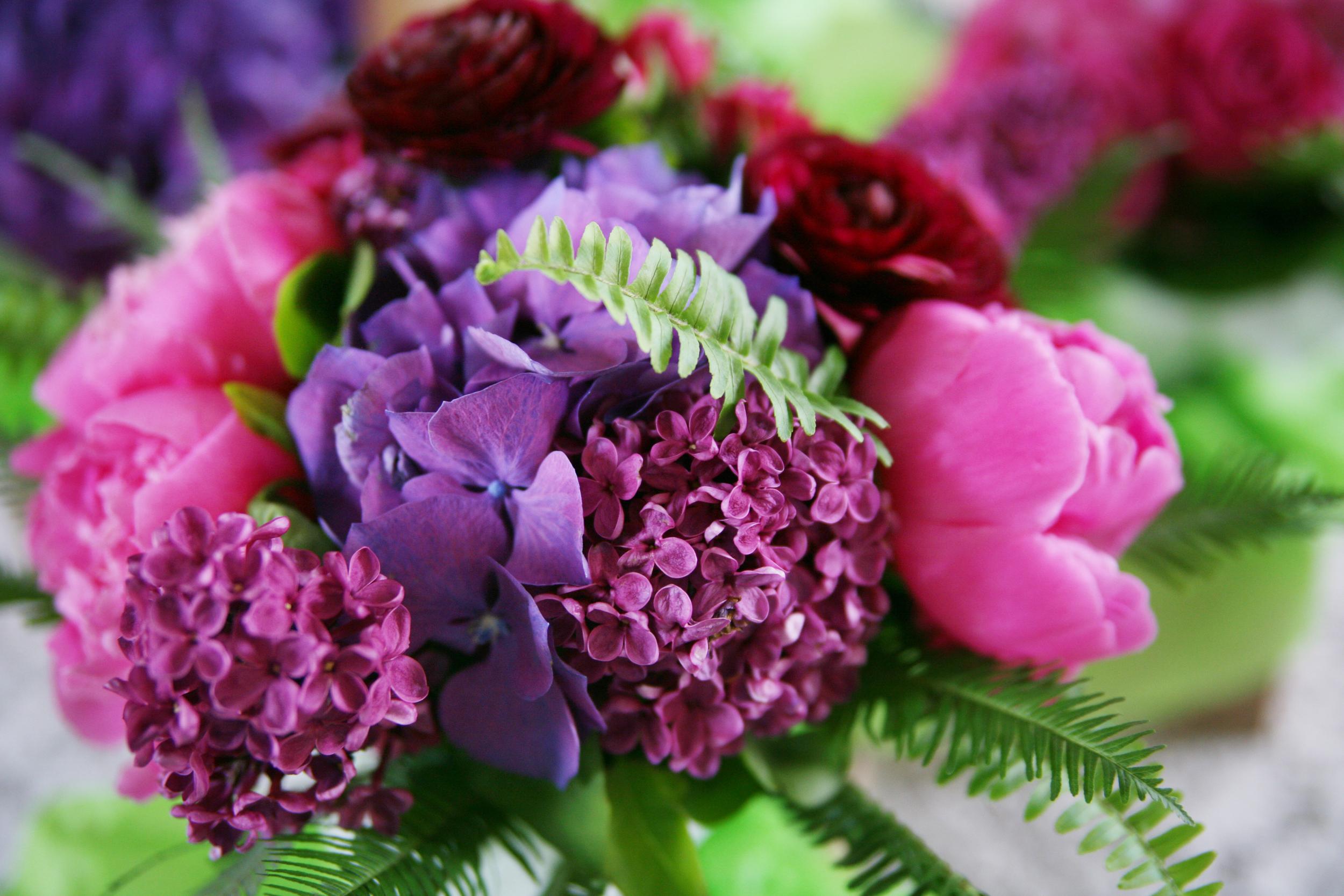 harvest home flower 2.JPG