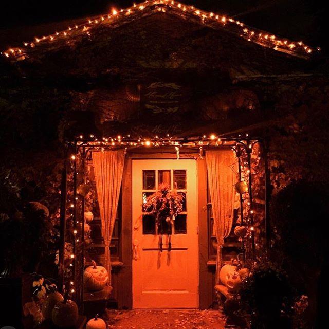 Happy Fall from all of us @harvesthomewayzata New Fall merchandise is arriving daily!  Our pumpkin arrangements are back!  #shoplocal #harvesthomewayzata #smallbusiness #wayzata #lakeminnetonka #europeanboutique #msp #twincities #floralarrangements #pumkins #fallharvest #weddingseason #privateplanting