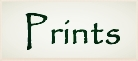 Prints Header 2.png