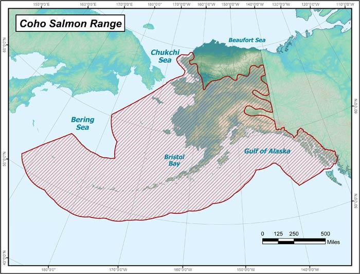 Coho-Salmon-Range.jpg