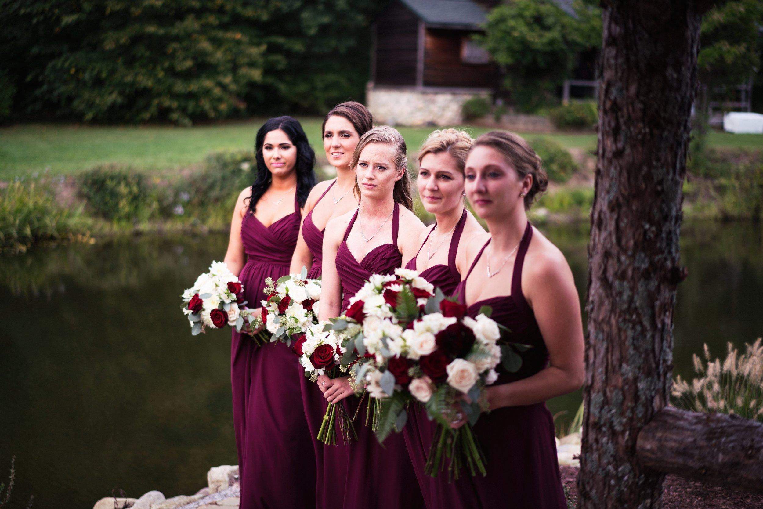 Blog-Lisa-James-Wedding-at Rosebud Estate Weddings in Arcade NY by Stefan-Ludwig-Photography-Buffalo-NY-46-x.jpg