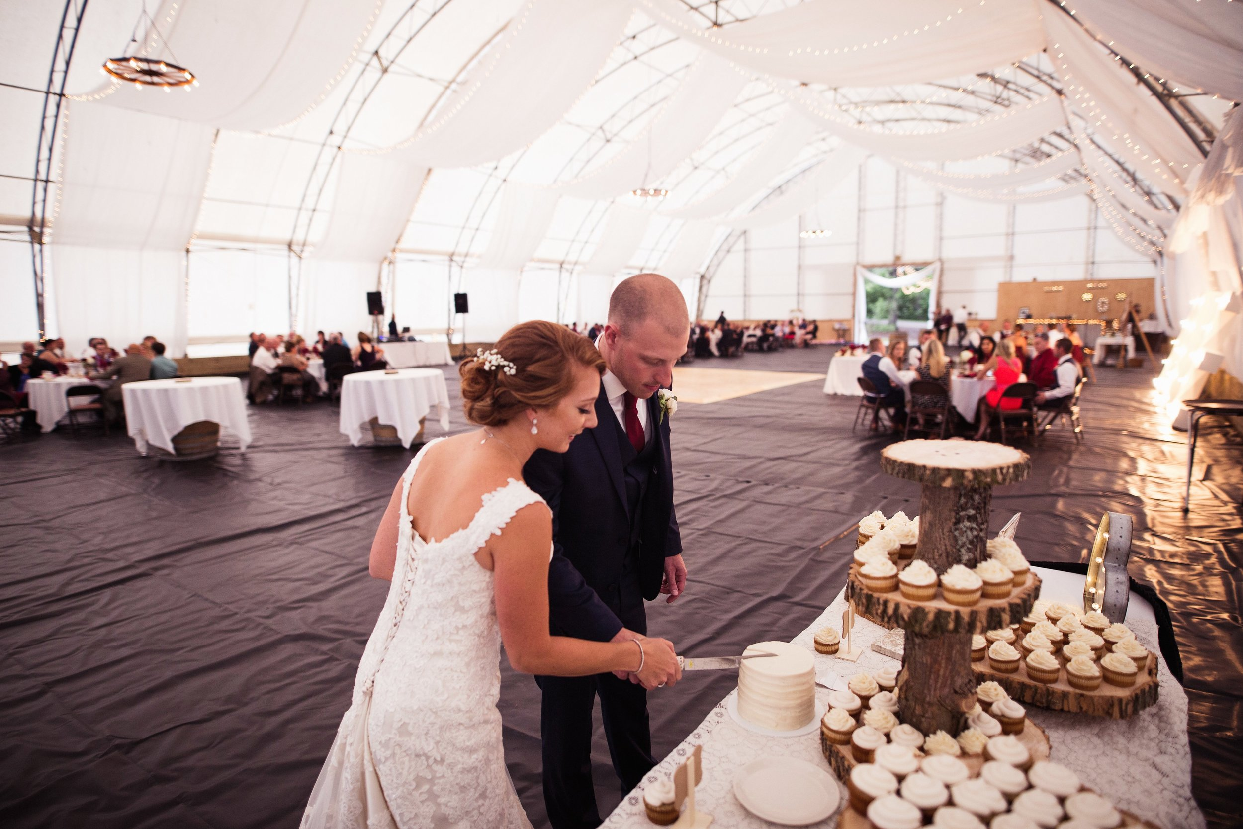 Blog-Lisa-James-Wedding-at Rosebud Estate Weddings in Arcade NY by Stefan-Ludwig-Photography-Buffalo-NY-69-x.jpg