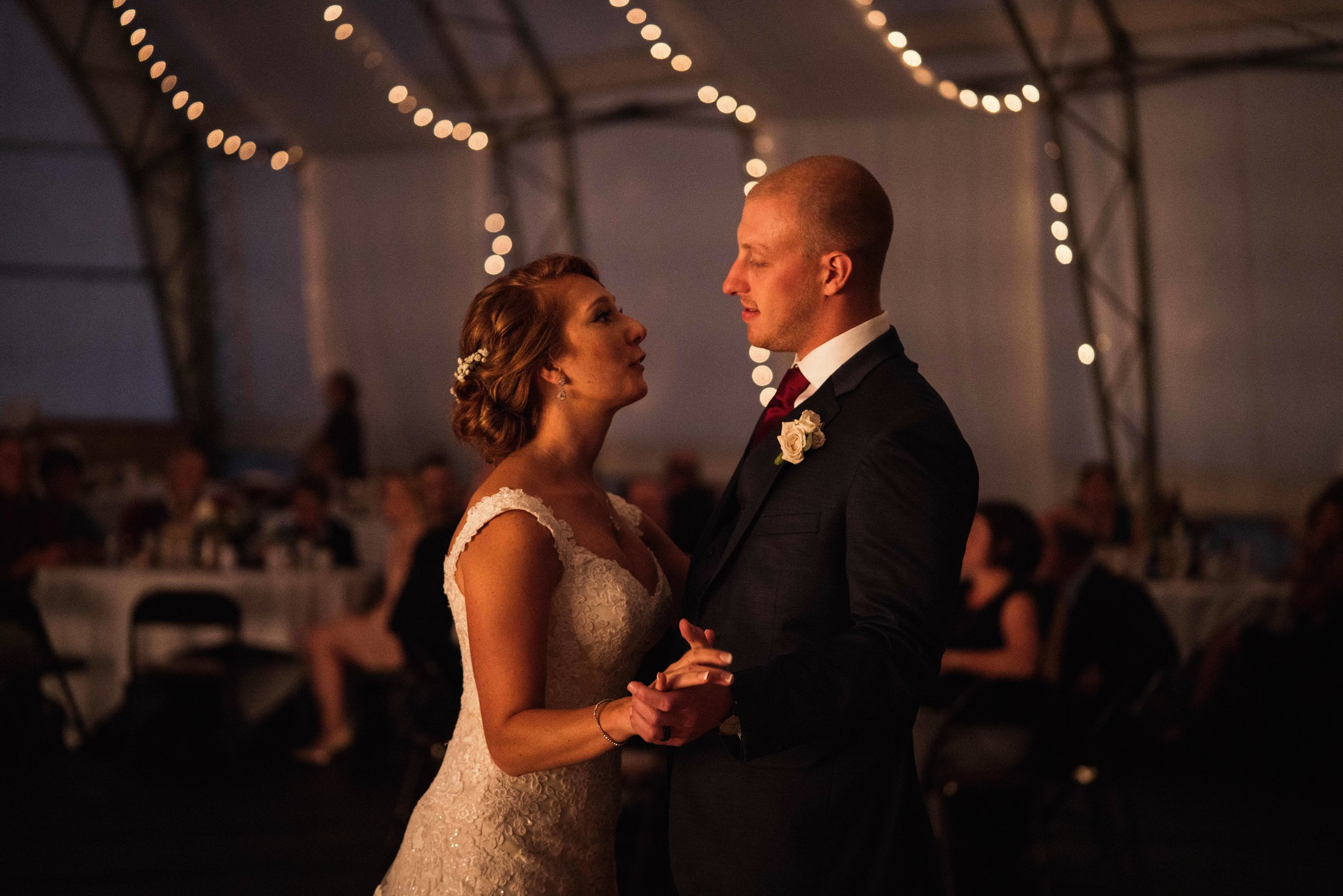 Blog-Lisa-James-Wedding-at Rosebud Estate Weddings in Arcade NY by Stefan-Ludwig-Photography-Buffalo-NY-71-x.jpg