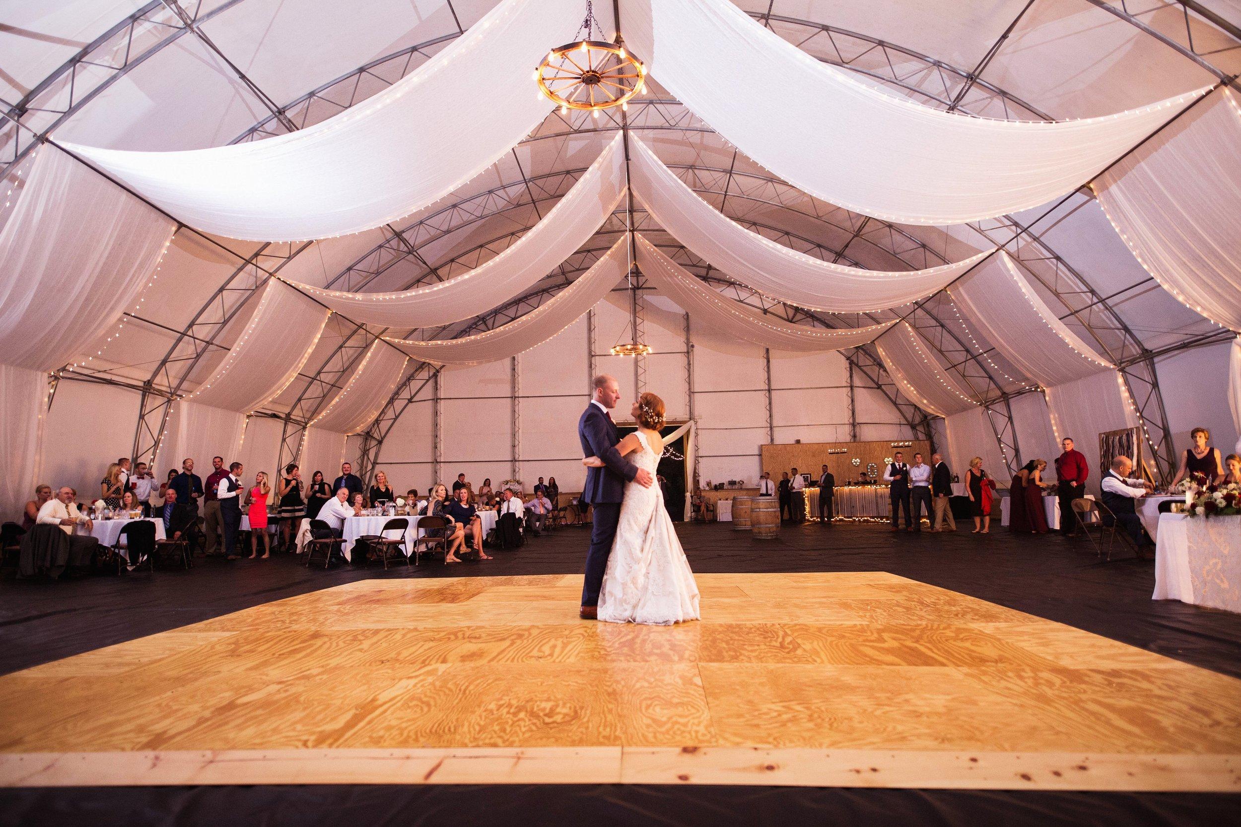 Blog-Lisa-James-Wedding-at Rosebud Estate Weddings in Arcade NY by Stefan-Ludwig-Photography-Buffalo-NY-72-x.jpg