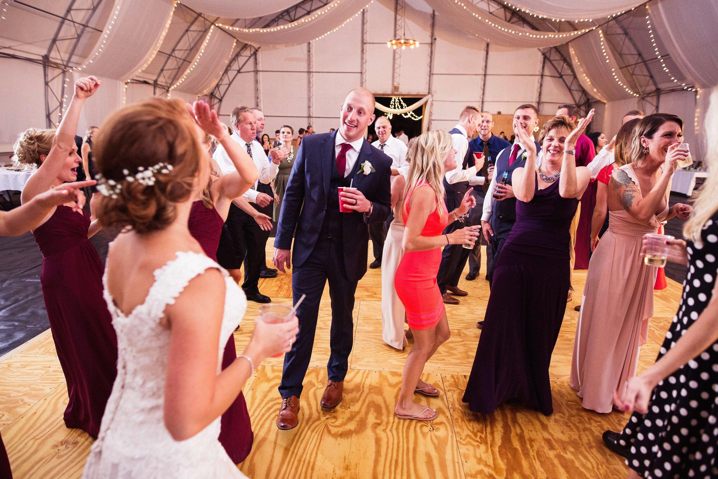 Blog-Lisa-James-Wedding-at Rosebud Estate Weddings in Arcade NY by Stefan-Ludwig-Photography-Buffalo-NY-75-x.jpg