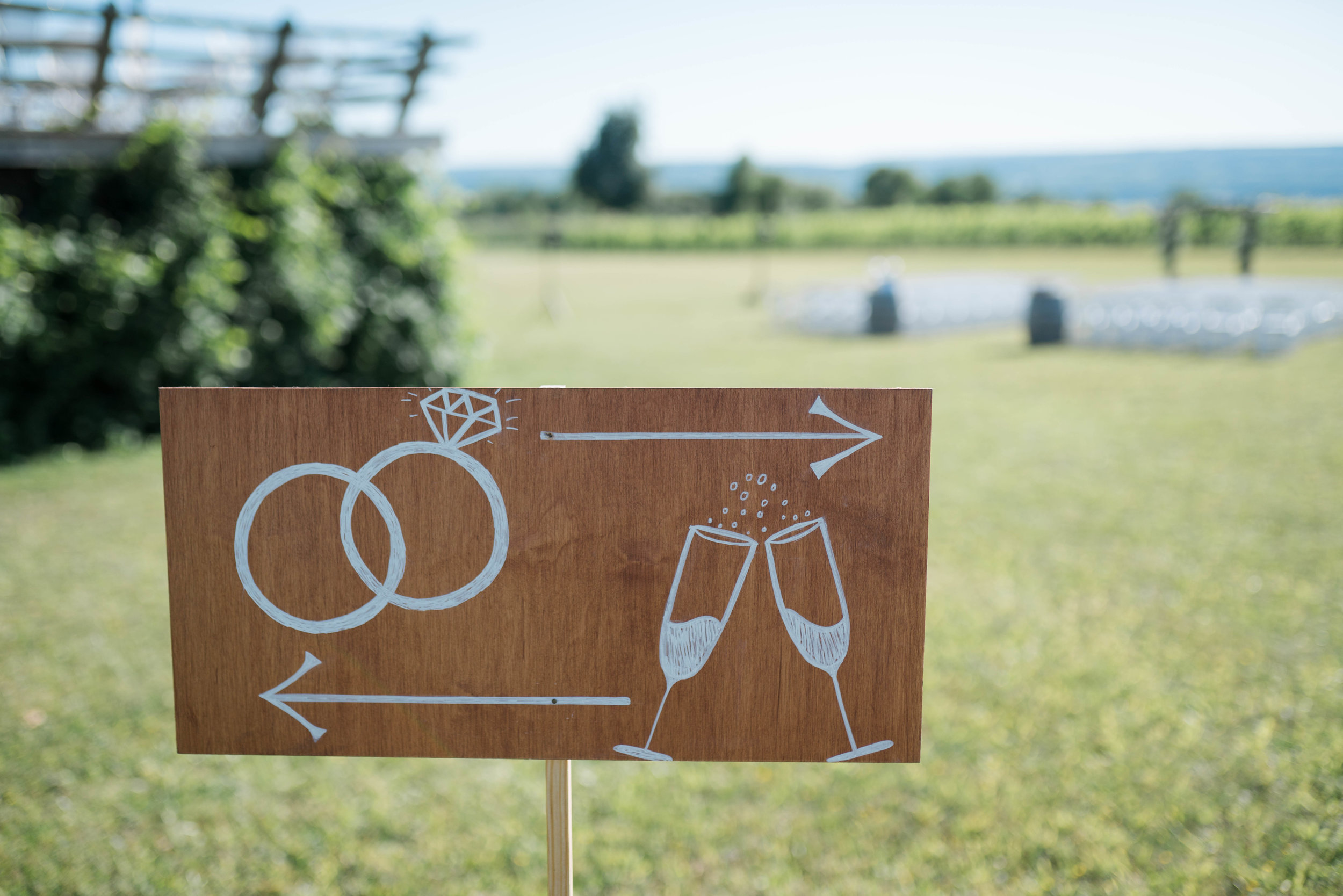 Wedding Photography at Wagner Vineyards Ginny Lee Cafe Finger Lakes by Stefan Ludwig Photography-66.jpg