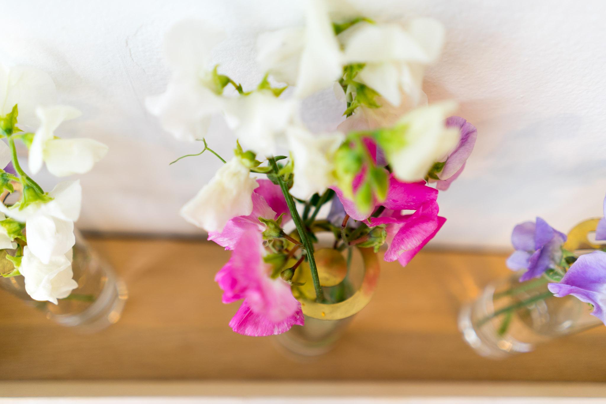 Blume Whistle-01193.jpg