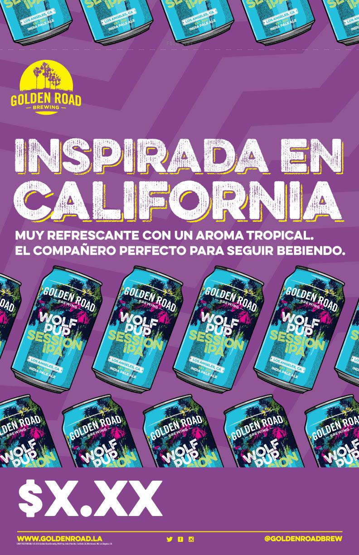 Casecard 11 x 17 —   PDF