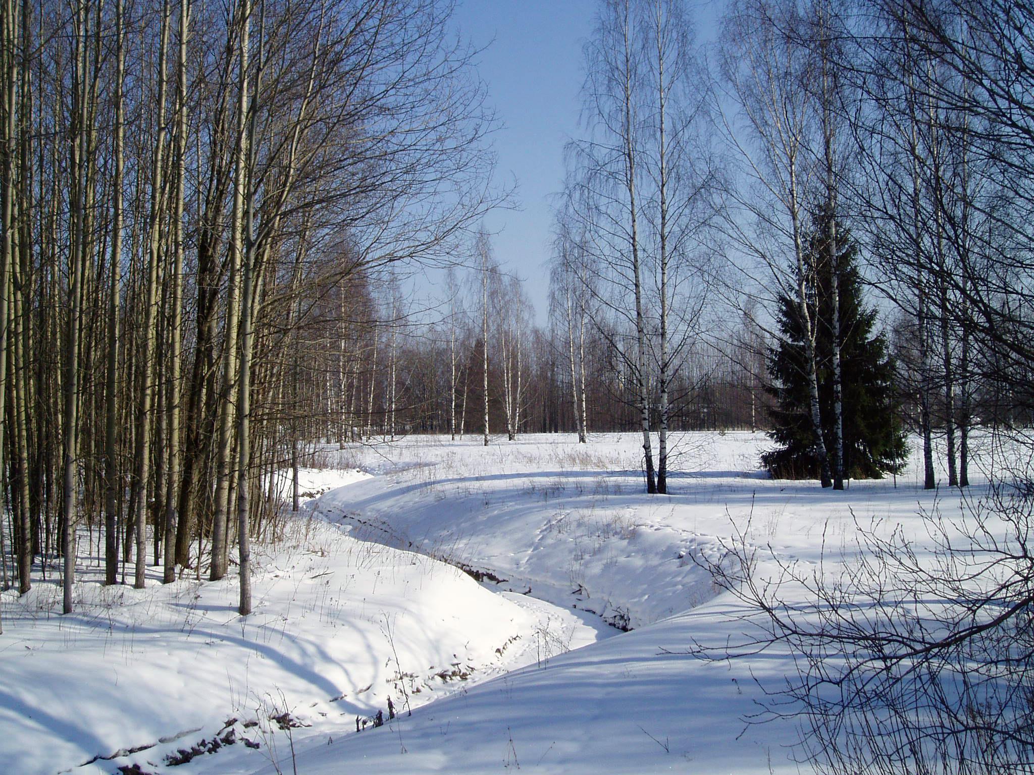 Suomi (11).jpg