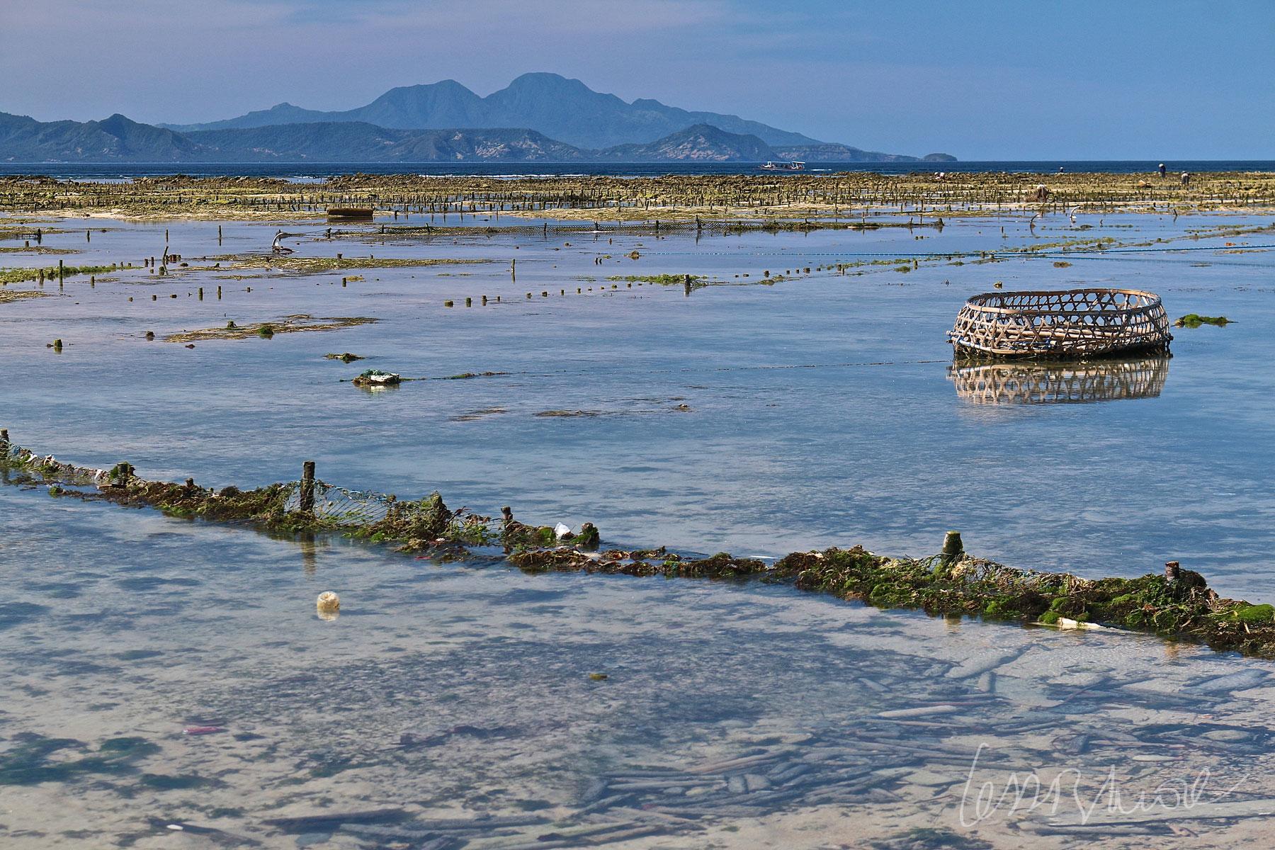 Espectacular panorámica de una granja de cultivo de algas haciéndose visible al bajar la marea con vistas al imponente Gunung Agung en Bali. Fotografía hecha en Nusa Lembongan, Indonesia.   Cl      ick + info >