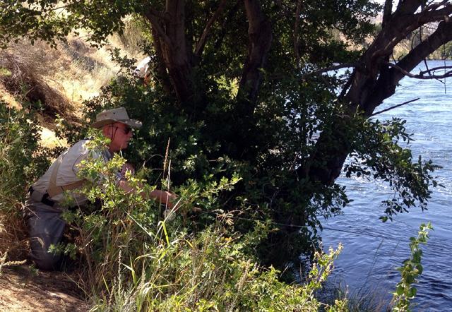 Dave Bouta stalking a few big trout.jpg