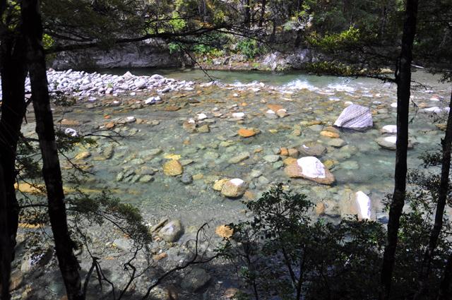 river scenery.jpg