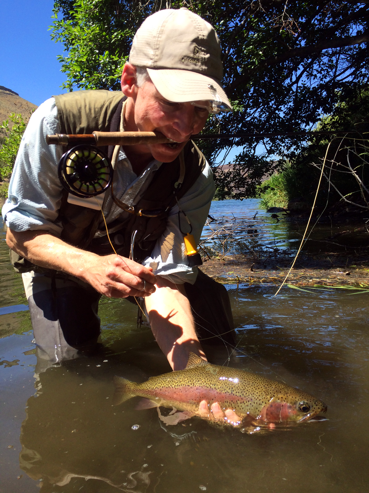 A stunning trout we found hammering caddis in some slack waterunder a tree... we put in some blood sweat and tears for this fish!