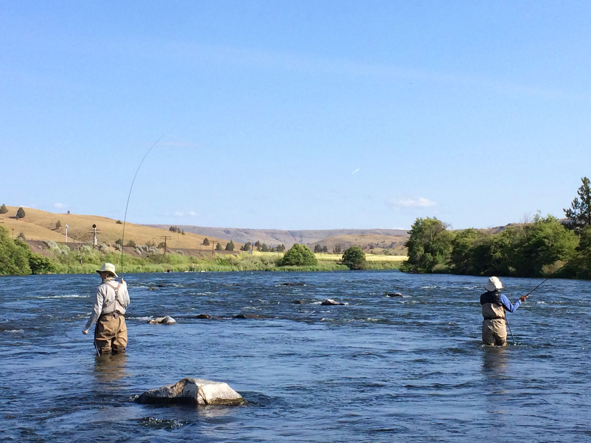 Working some mid river pocket water on the Deschutes River near Whiskey Dick.