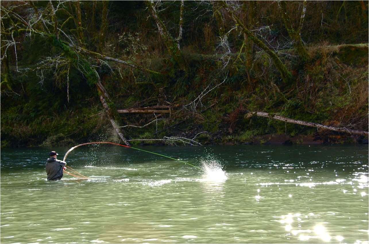Spey casting for winter steelhead on the North Oregon coast