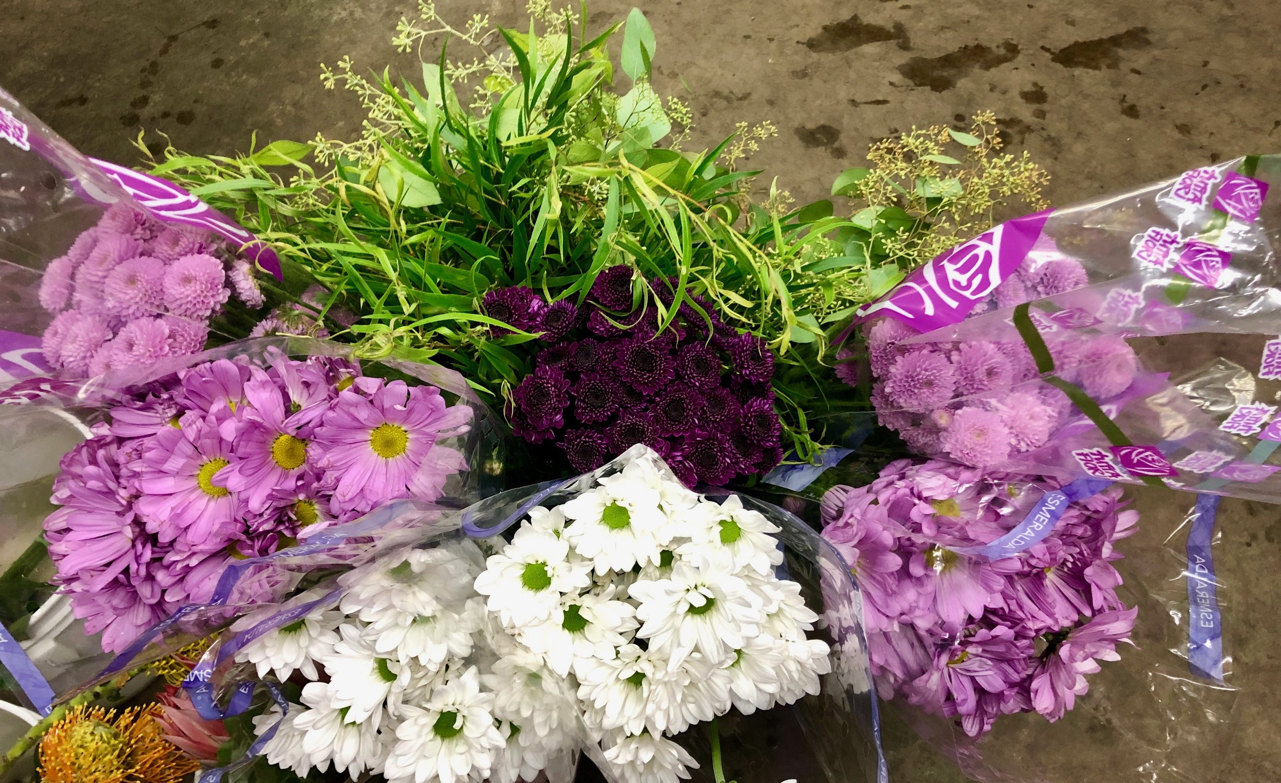 White and lavender daisies, lavender and dark purple button daisy mums, willow eucalyptus and seeded eucalyptus.