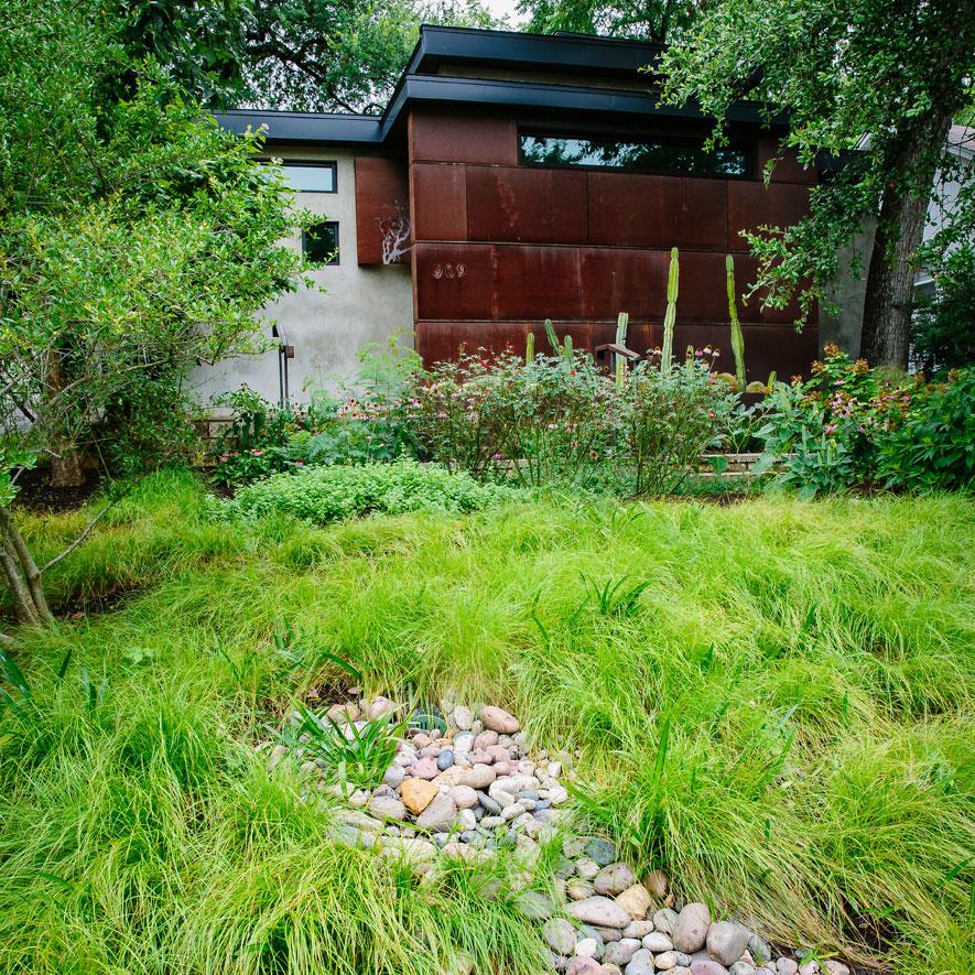 deluge-grass-885.jpg