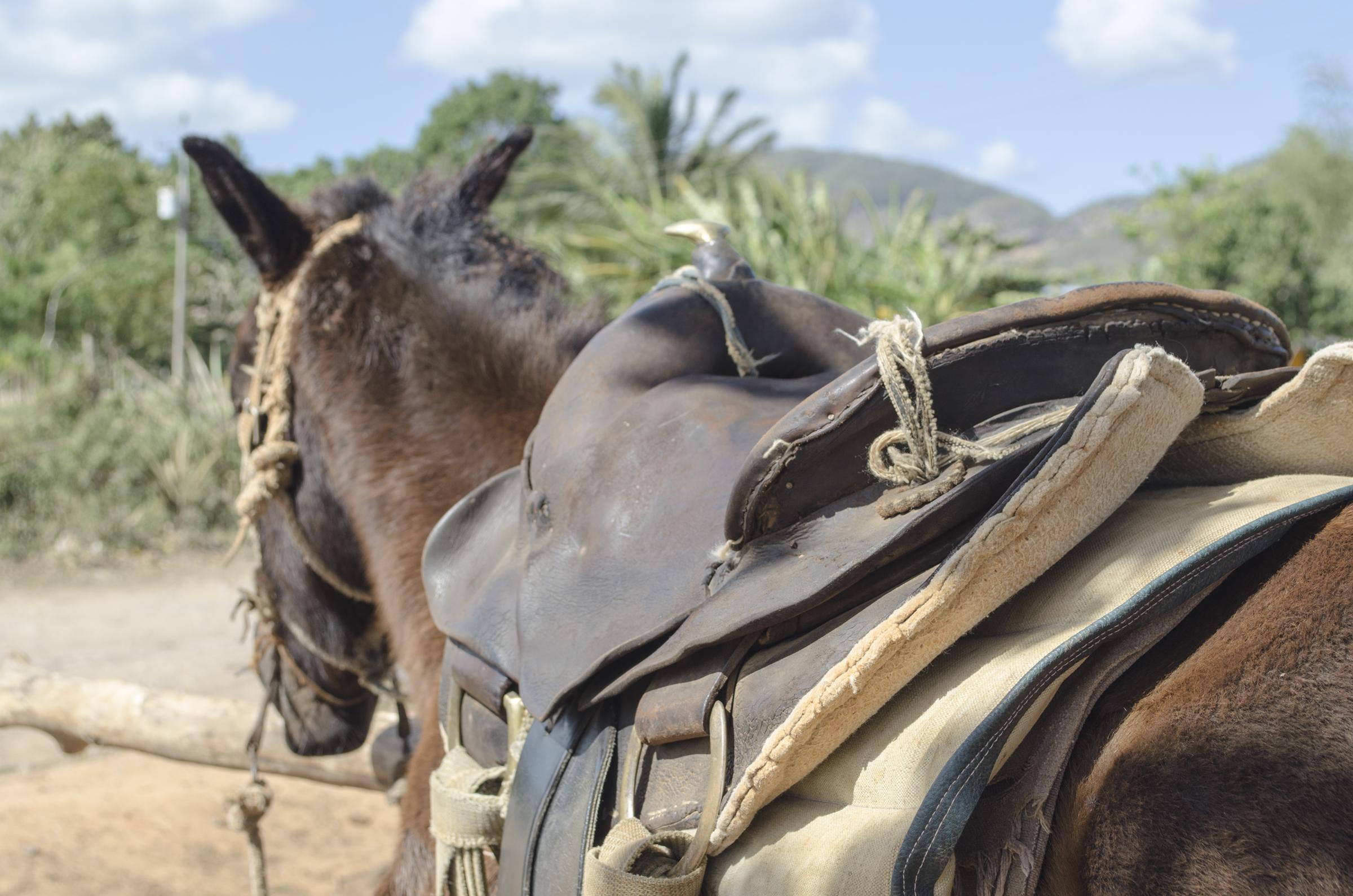 Cuba_0823.jpg