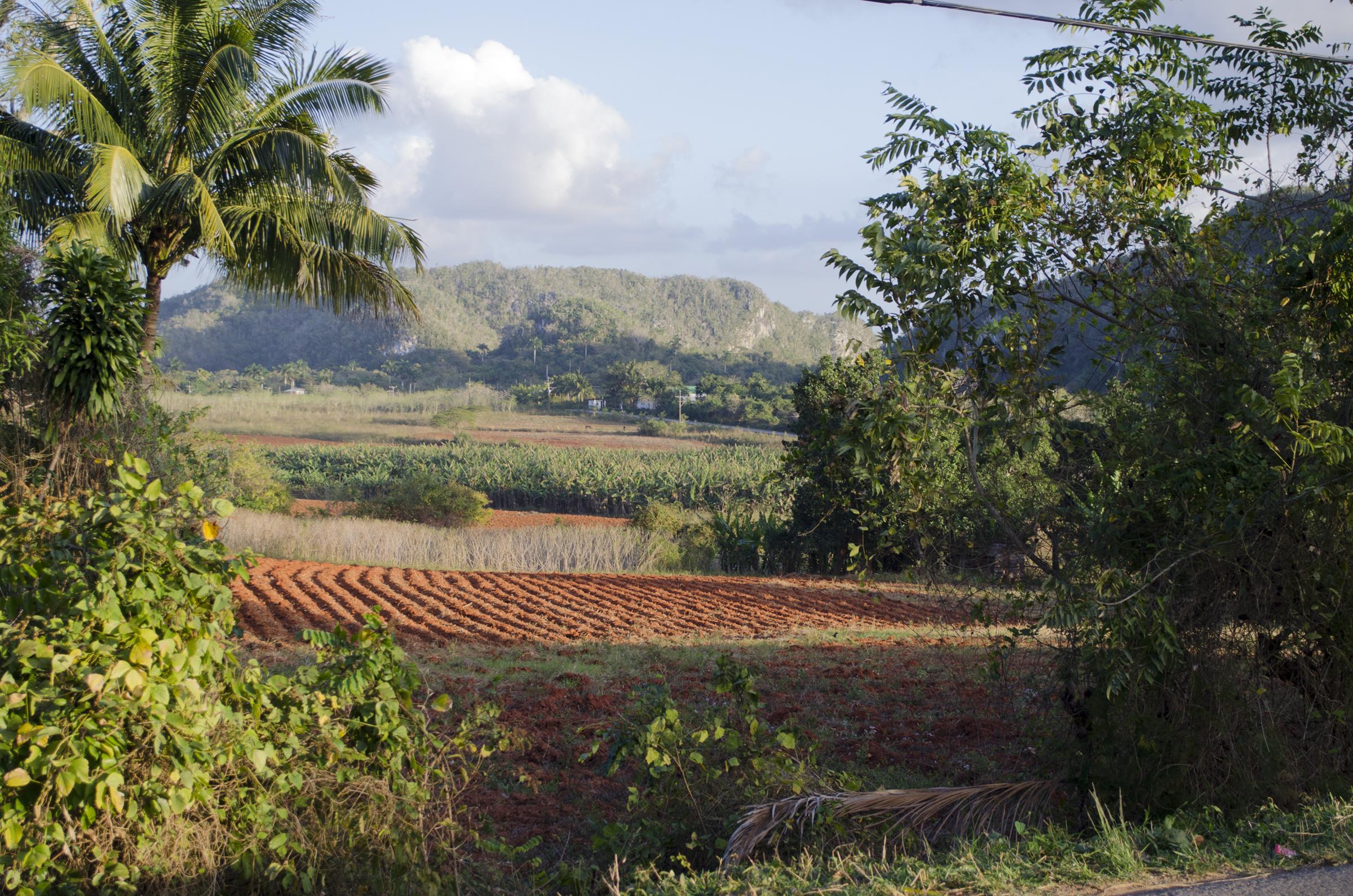 Cuba_0891.jpg