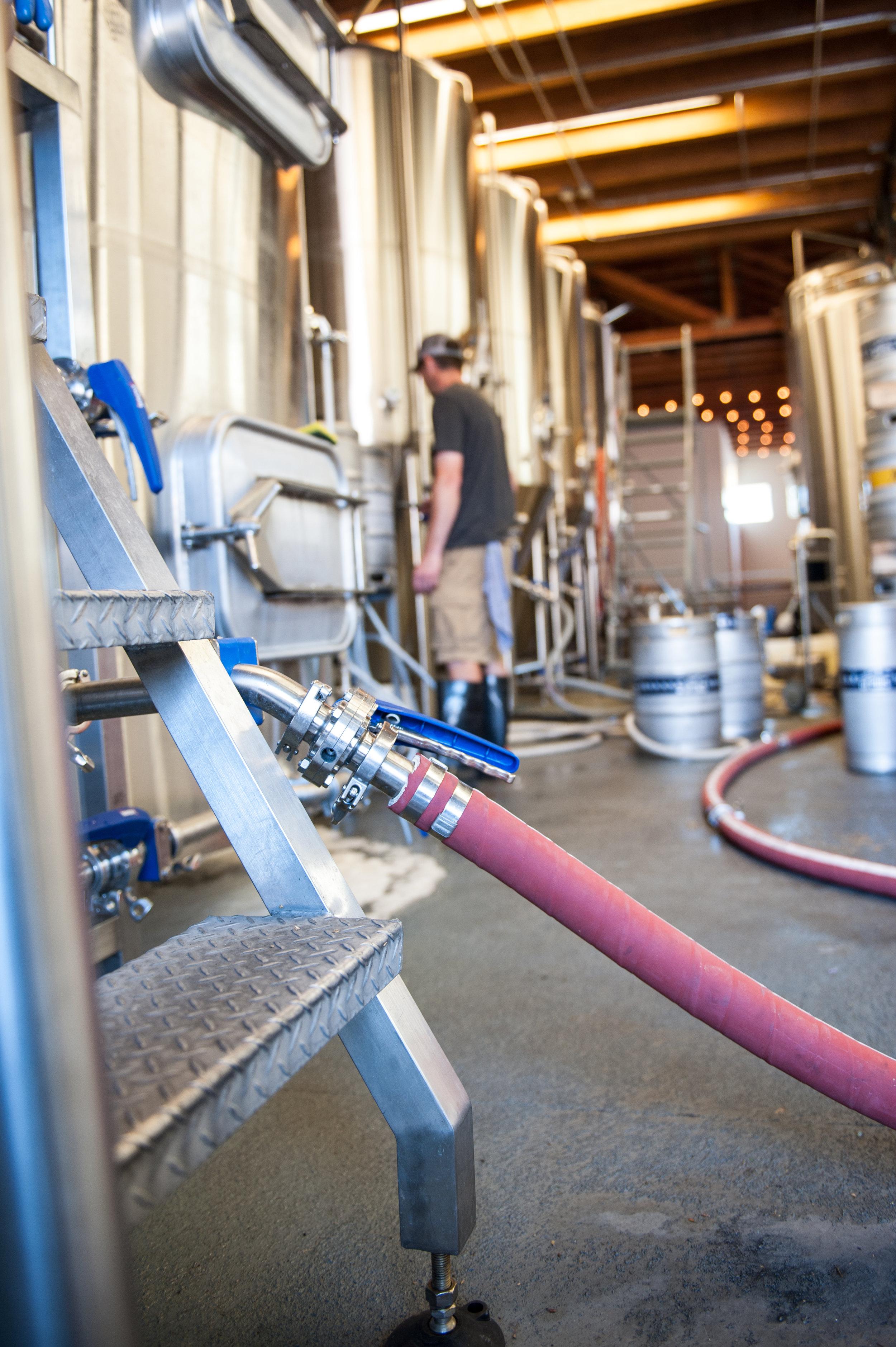 brewers brewing-9.jpg