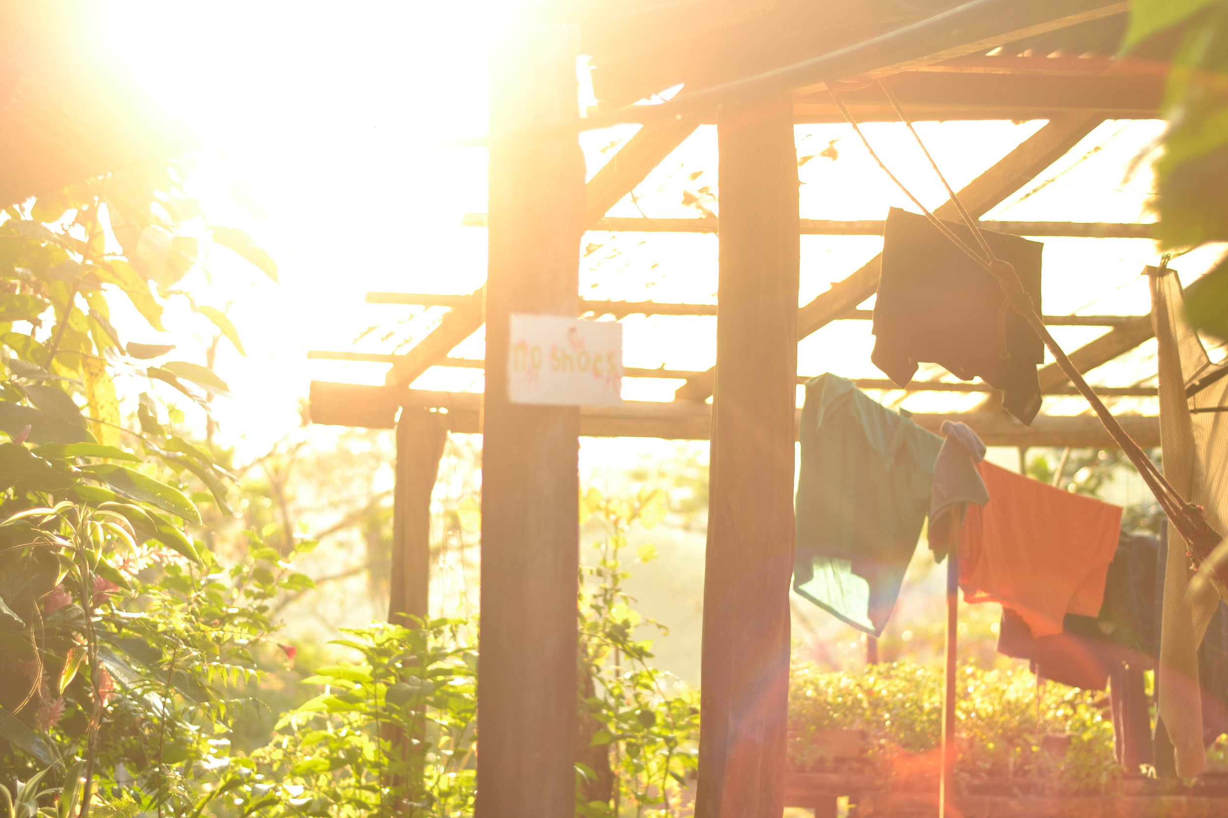 Laundry hanging out to dry in the morning sun