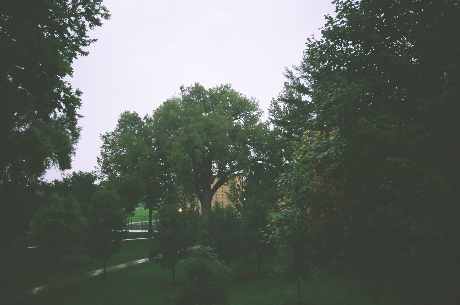 rainy mornings // view from my dorm room