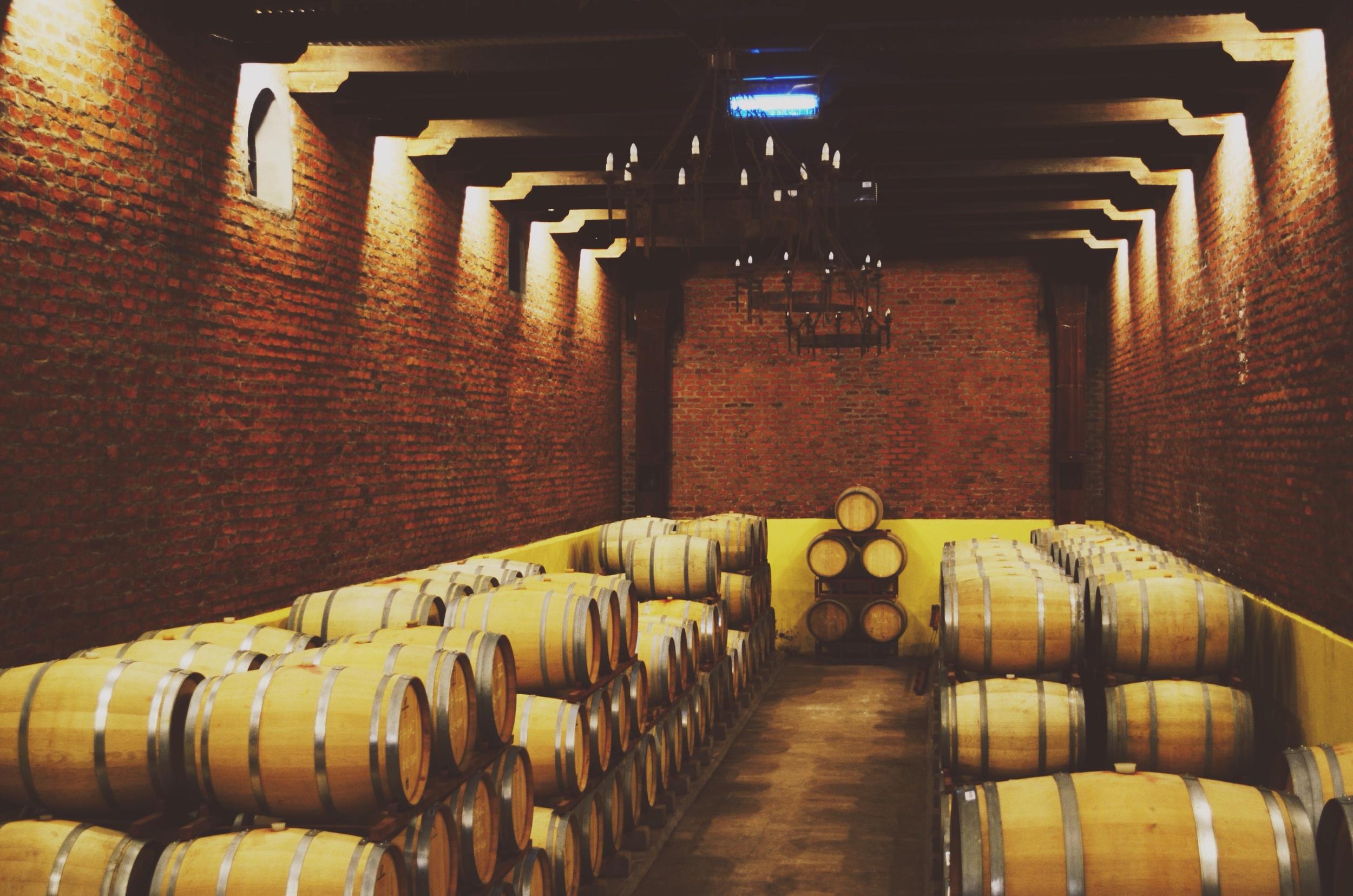 Wine cellar // 29 may
